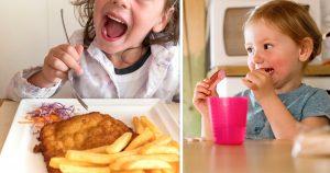 Noktara - Abendland gerettet- Kita setzt Schweinefleisch-Verbot aus