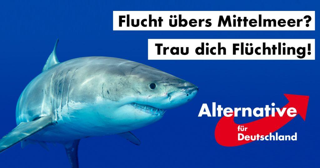 Noktara - AfD fordert zur Abschreckung mehr Haie gegen Flüchtlinge im Mittelmeer