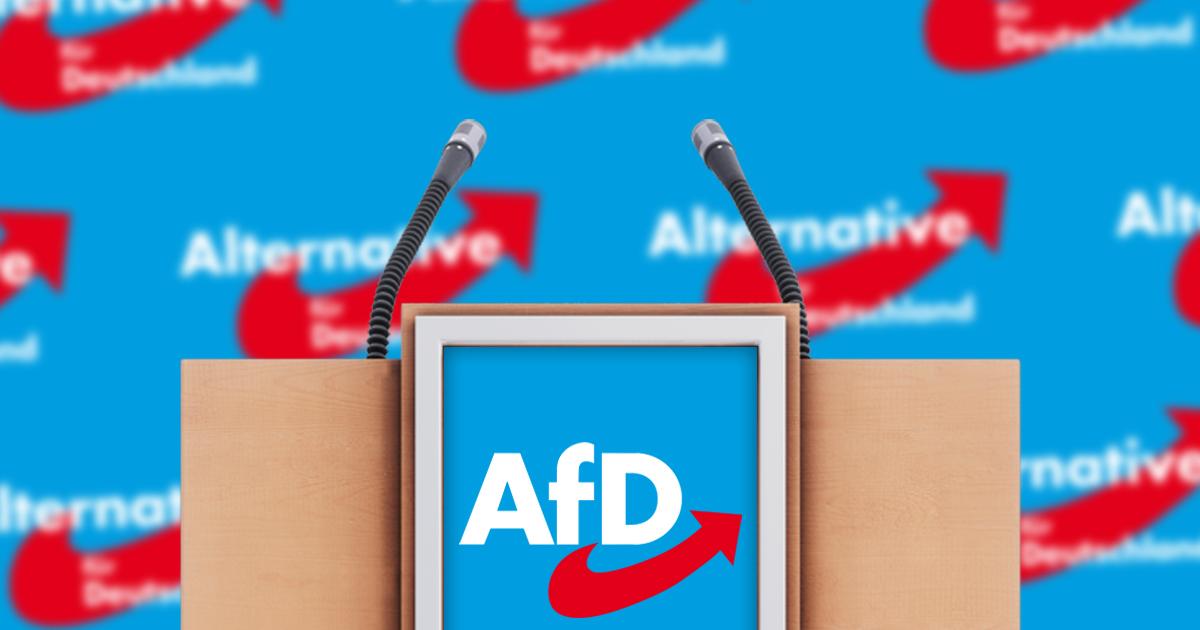 Noktara - AfD wirft alle Nazis aus der Partei- Keiner bleibt übrig