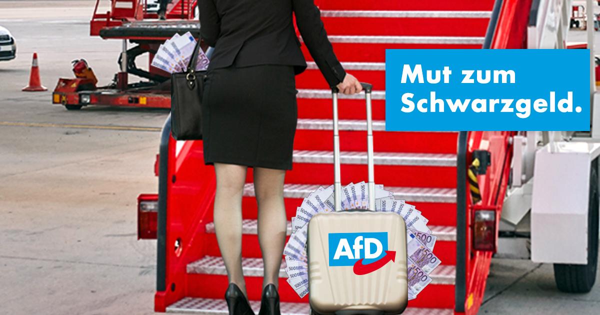 Noktara - Alice Weidel flüchtet mit Parteispenden in die Schweiz - Mut zum Schwarzgeld