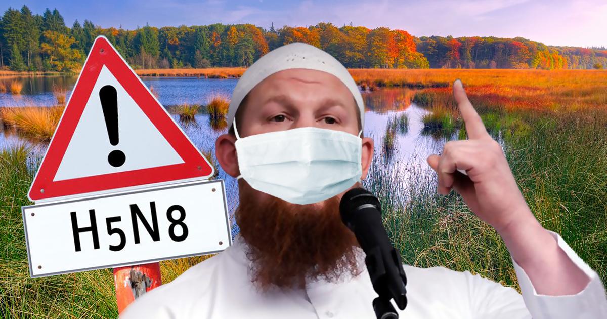 Ansteckend: Angst vor Pierre Vogelgrippe