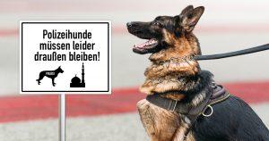 Noktara - Bombendrohung in Moschee - Polizeihunde müssen draußen bleiben