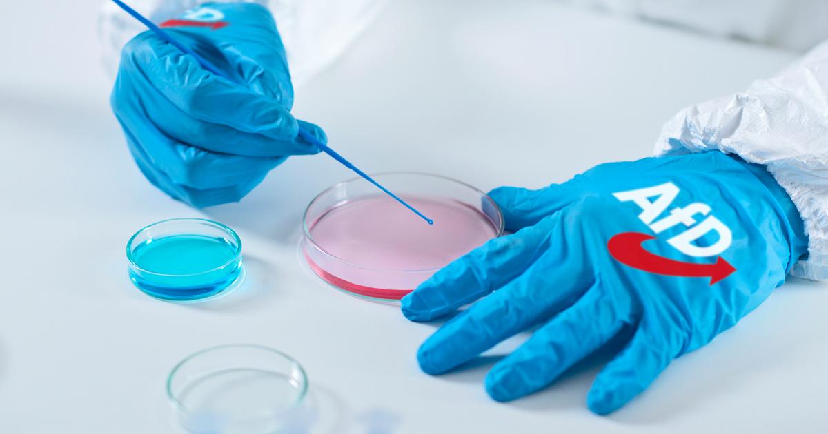 Noktara - Coronavirus in AfD-Labor erschaffen, um Grenzen zu schließen