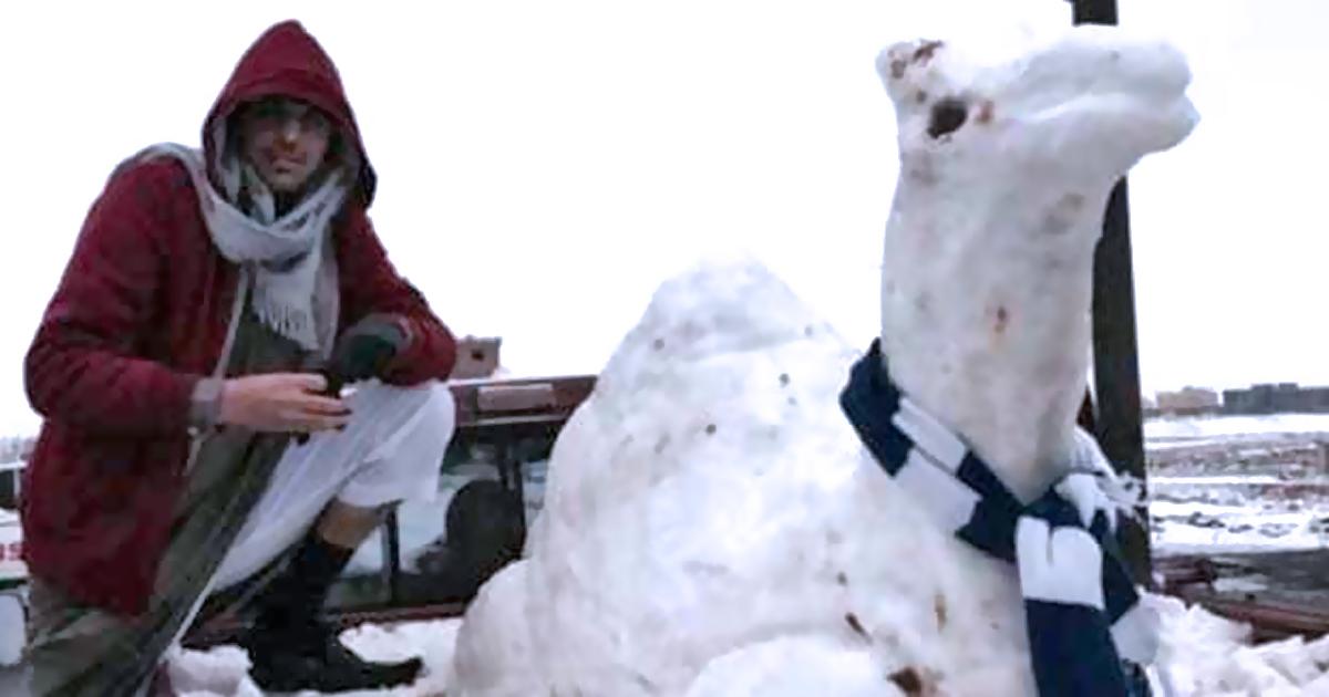 Die 7 besten islamischen Schneemänner - Kamel