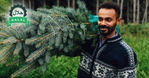Noktara - Halal Weihnachtsbaum - Damit Muslime Bescherung feiern können
