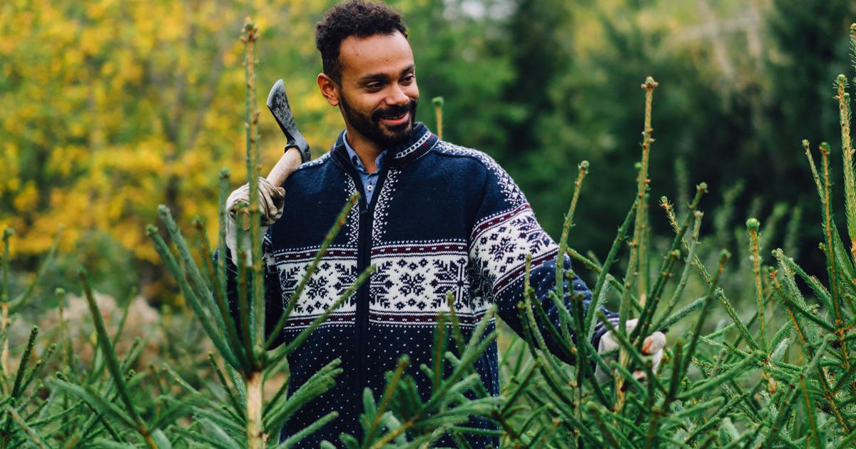 Noktara - Halal Weihnachtsbaum - Damit Muslime Bescherung feiern können - Axt