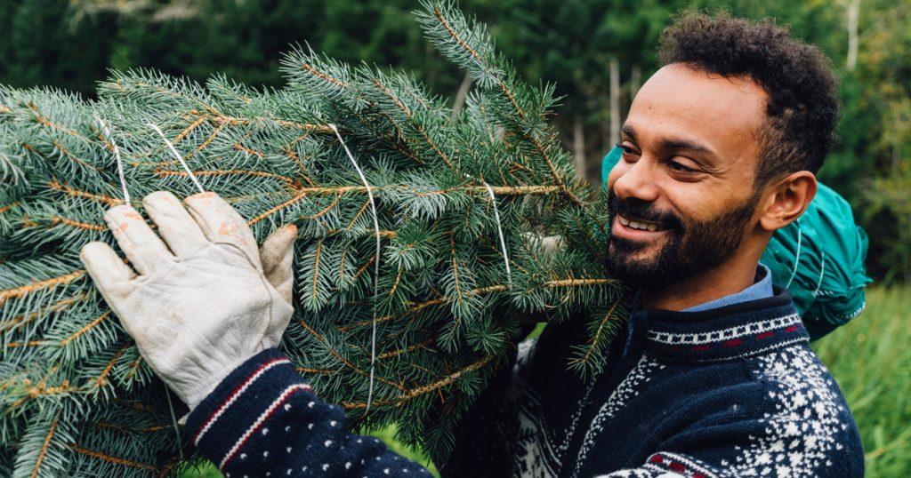 Noktara - Halal Weihnachtsbaum - Damit Muslime Bescherung feiern können - Haltung