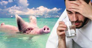 Noktara - Ist das Trinken von Schweinewasser haram oder halal