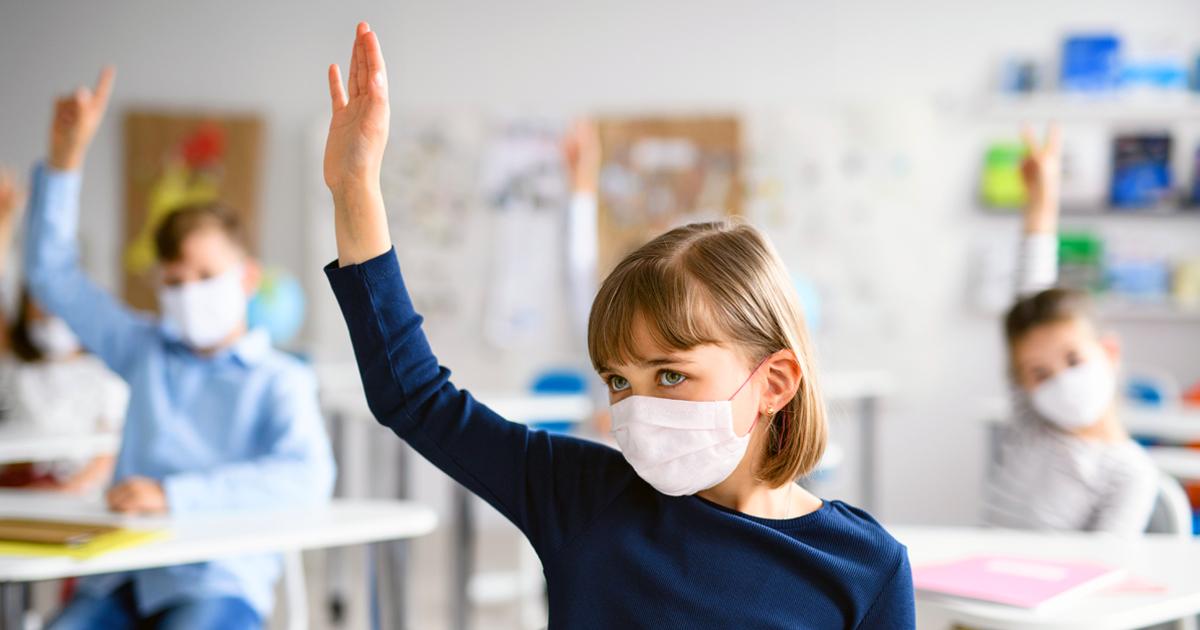 Noktara - Kultusminister kündigen Virologie als Wahlpflichtfach an