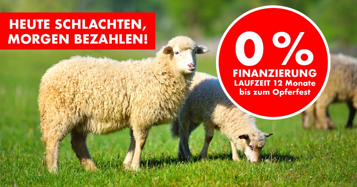 Noktara - Kurban auf Raten - Heute schlachten, morgen bezahlen