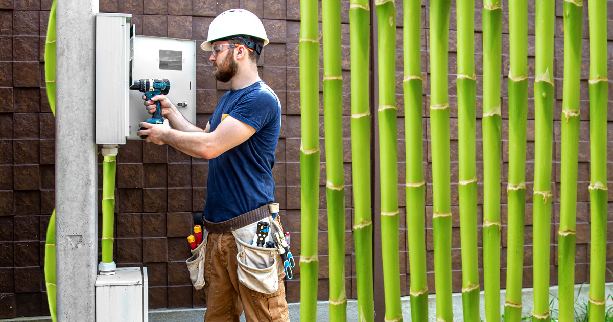 Noktara - Lahmes Internet- Bundestag beschließt Recht auf Bambusleitung - Flächendeckende Verlegung von Bambusleitungen