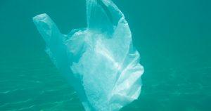 Noktara - Meeresbiologen erklären Plastiktüten im Ozean zu neuer Quallenart