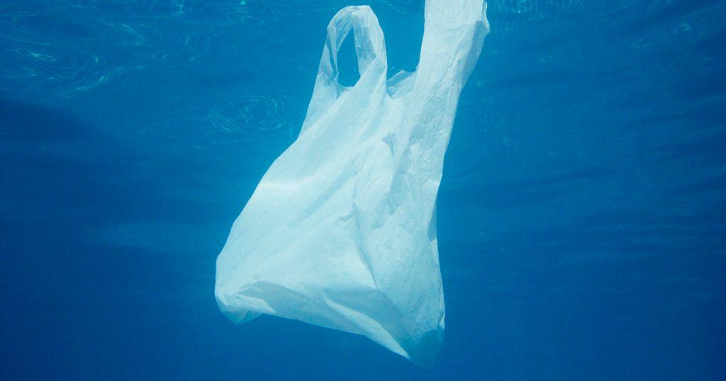 Noktara - Meeresbiologen erklären Plastiktüten im Ozean zu neuer Quallenart - Nahaufnahme