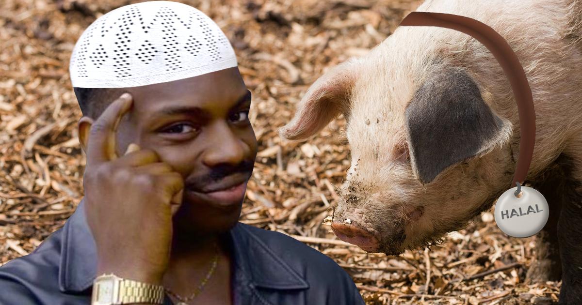 Muslim hält Schwein als Haustier und nennt es HALAL