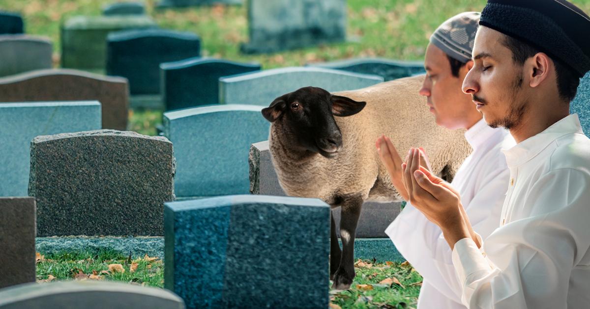 Noktara - Nach dem Opferfest- Muslime halten Totengebet für Schafe ab