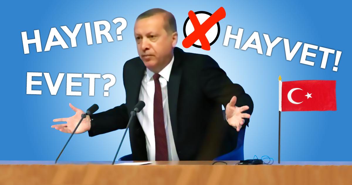 Referendum: Mehrheit der Türken in Deutschland stimmt für HAYVET