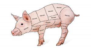 Noktara - Schweinefleischkunde - Diese Teile vom Schwein sind für Muslime haram - Halal-Metzgerei