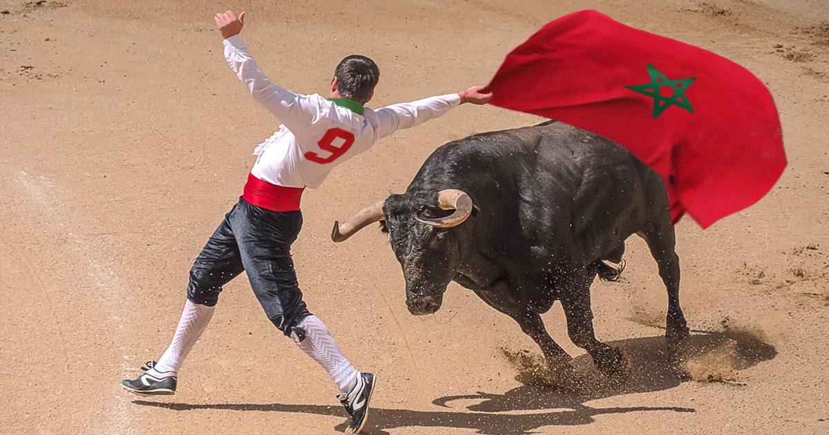 Noktara - Ungewollter Stierkampf - Marokko-Fan auf die Hörner genommen