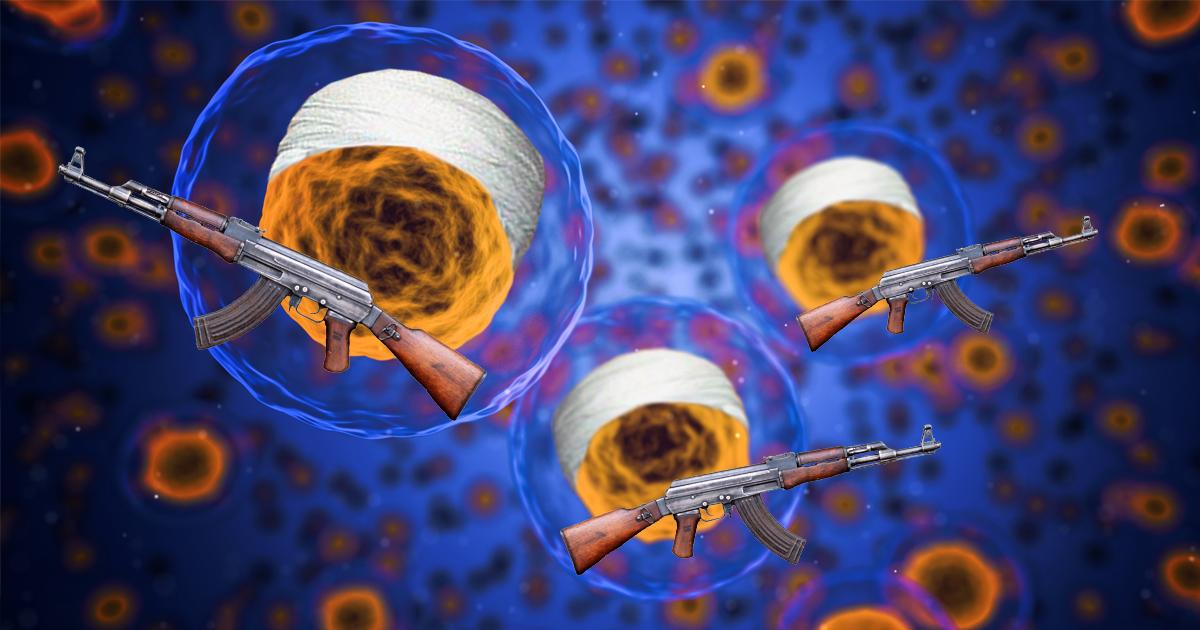 Unter dem Mikroskop: Forscher entdecken Terrorzelle