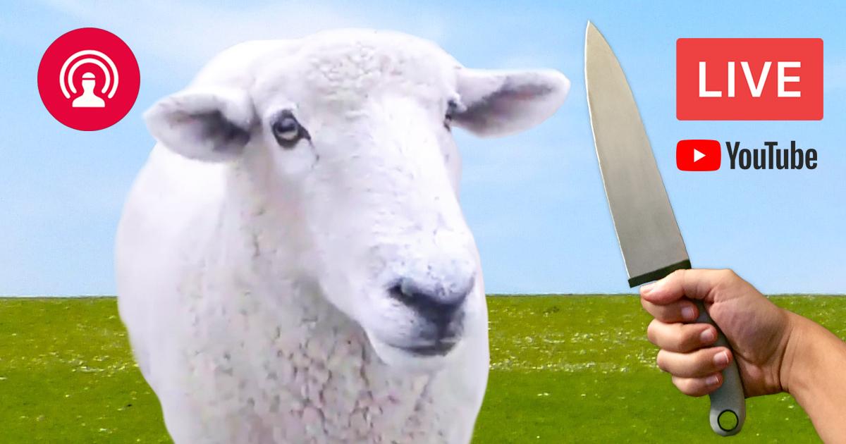 Noktara - Wir schächten zum Opferfest ein Schaf LIVE auf YouTube
